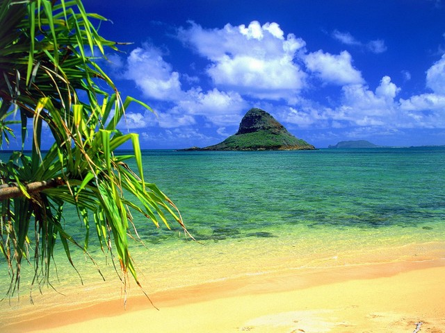 http www.routard.com guide_a_voir hawaii.htm